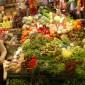 http://s122944817.onlinehome.us/besttimetogo/photos/uploads/227_barcelona_farmer's_market__122.jpg
